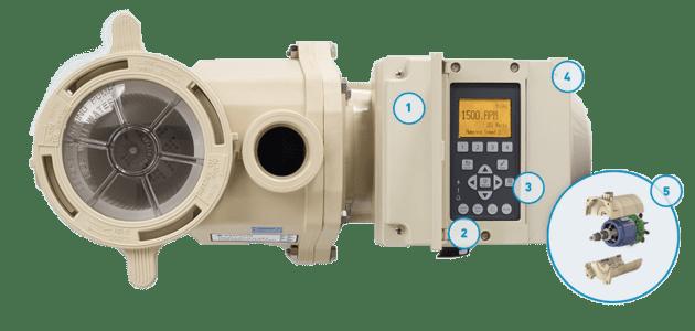 pool pump IntellifFlo VSF Pumps